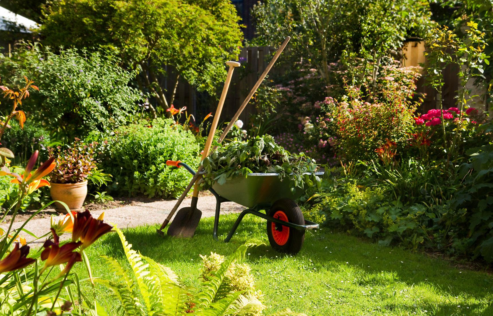 usługi ogrodnicze toruń projektowanie ogrodów zakładanie zieleni ogrodnictwo
